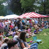 Crowd watching martial arts demonstration at Taste of Amherst